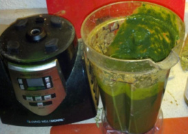healthmaster blender for smoothies