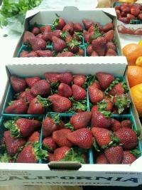 Fresh Strawberries from Farmers Market